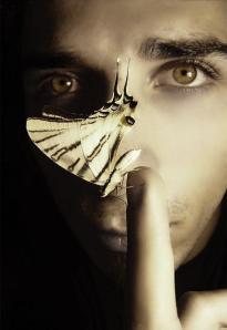 butterfly_effect2